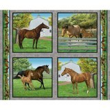 Wild Wings, Summer Breeze Horse Pillow Fabric Panel