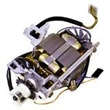 Motor, Singer #988529-019