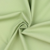 Circa Celadon, Moda Bella Solids Fabric
