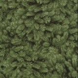 Timeless Treasures, Packed Pine Needles Fabric