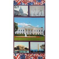 Welcome to Washington, American Spirit Fabric Panel