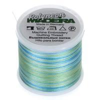 Madeira Polyneon Variegated Thread (220yds)