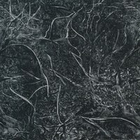 "108"" Quilt Backing, Branches, Black"