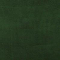Polar Fleece Fabric 60in - Hunter Green