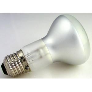 Bulb 120V, 30W  #996207