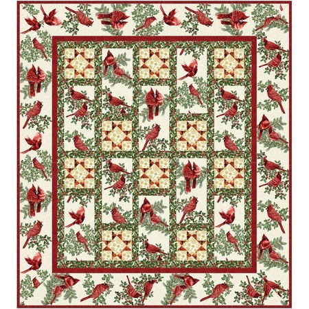 Dancing with the Stars Quilt Pattern, Animas Quilts Publishing