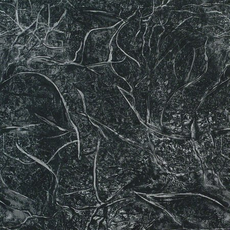 "108"" Quilt Backing, Branches Fabric, Black"