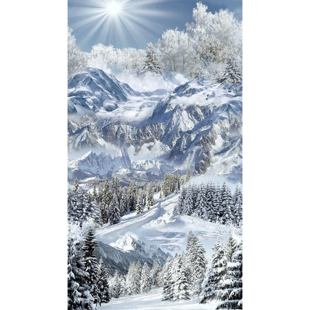 Timeless Treasures Scenic Winter Mountain Trail Fabric