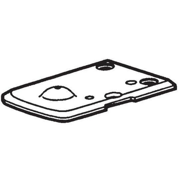 Needle Plate 4N, Brother #BROS59991001
